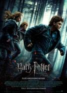 Harry Potter und die Heiligtümer des Todes - Teil 1 (2010)<br><small><i>Harry Potter and the Deathly Hallows: Part I</i></small>