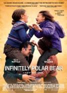 <b>Mark Ruffalo</b><br>Infinitely Polar Bear (2014)<br><small><i>Infinitely Polar Bear</i></small>