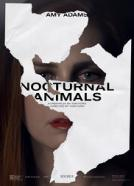 <b>Michael Shannon</b><br>Nocturnal Animals (2016)<br><small><i>Nocturnal Animals</i></small>