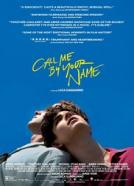 <b>Timothée Chalamet</b><br>Call Me by Your Name (2017)<br><small><i>Call Me by Your Name</i></small>